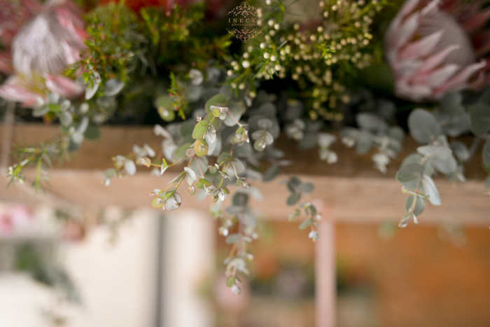 Alzan & Riaan wedding Preview low res123