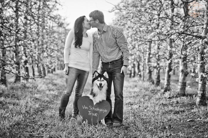 Sonja & Johan Esession preview low res48