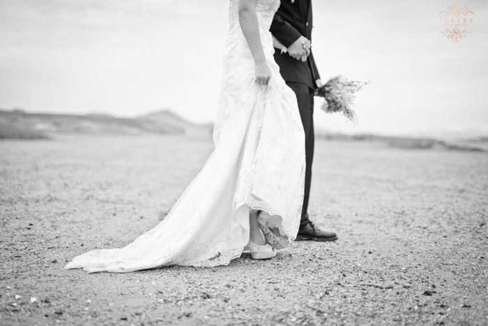 Toinet & Schalk Wedding Preview low res90