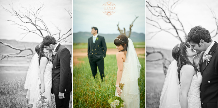 Toinet & Schalk Wedding Preview low res95