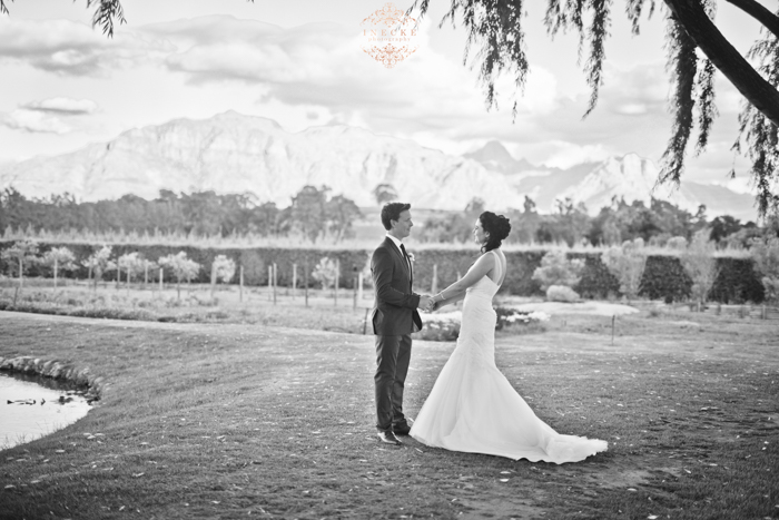 Delene & Nico Wedding preview low res71