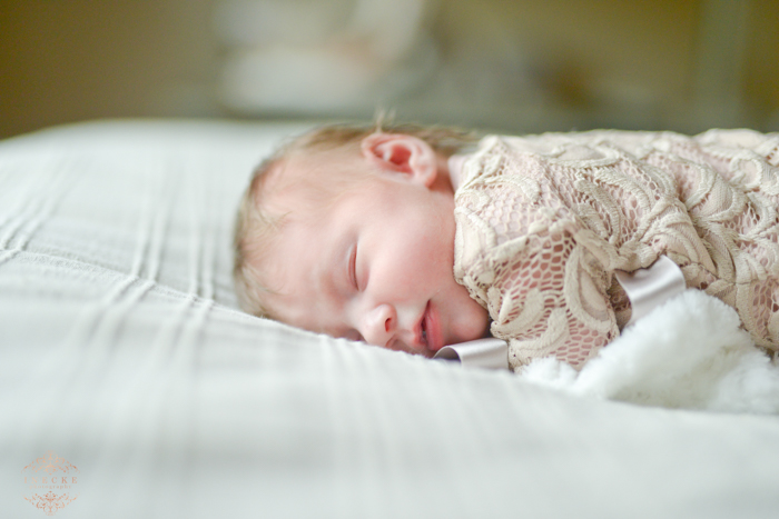 Lene Newborn Preview low res22