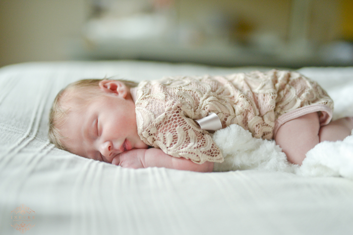 Lene Newborn Preview low res43