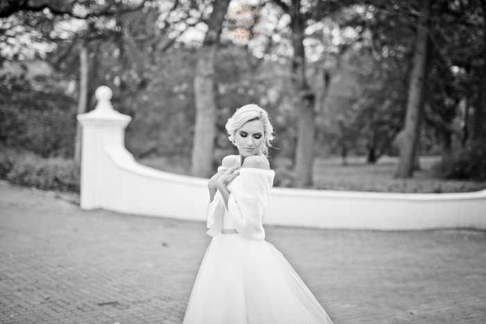 Elizabeth & Stephan Wedding Day preview low res98_