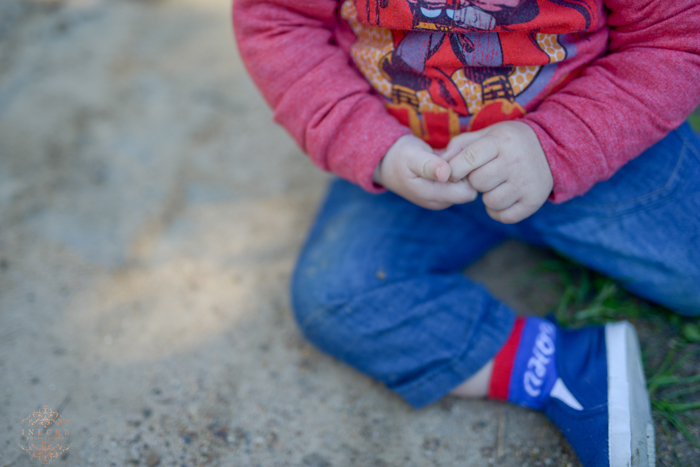 Myburg Perold Family Shoot Preview low res9