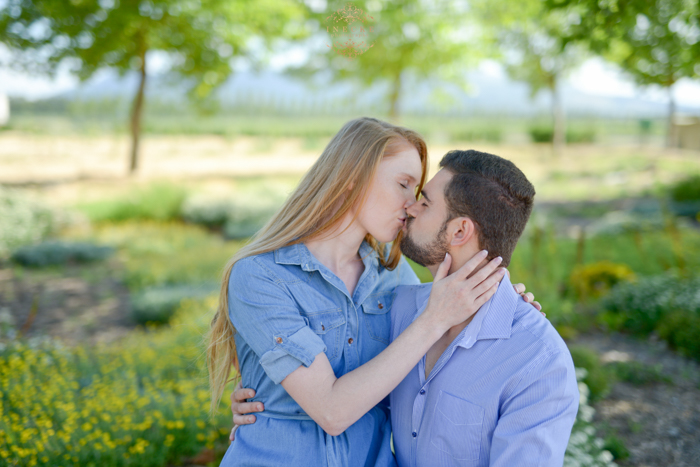 ernestus-lorraine-esession-preview-low-res11