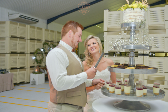 suanne-fanie-wedding-preview-low-res155