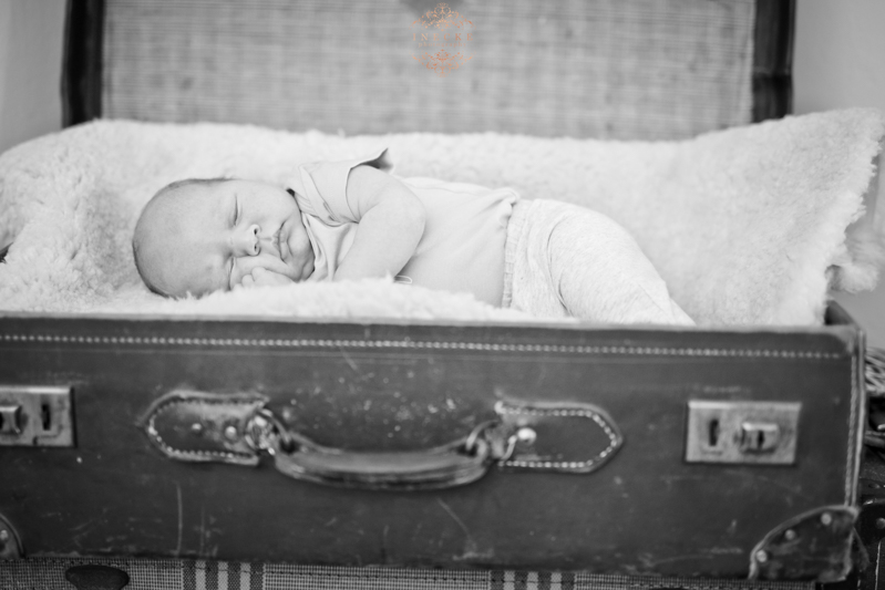 Morne Newborn Preview low res14