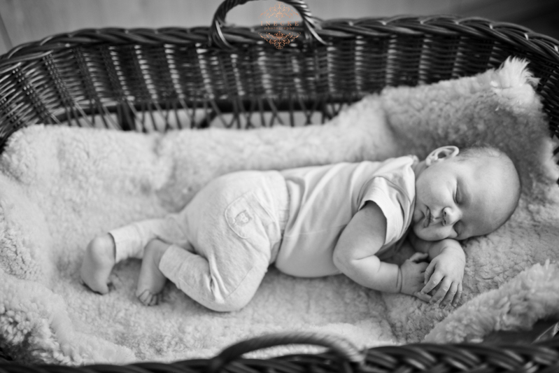 Morne Newborn Preview low res17