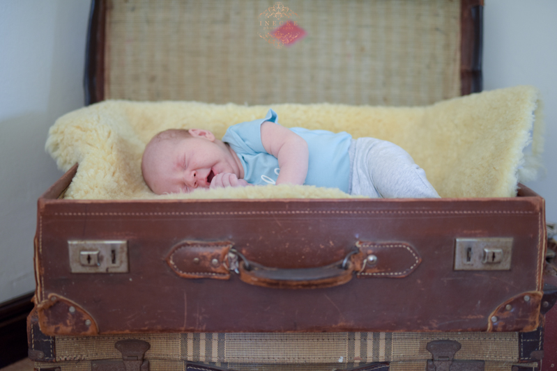 Morne Newborn Preview low res18