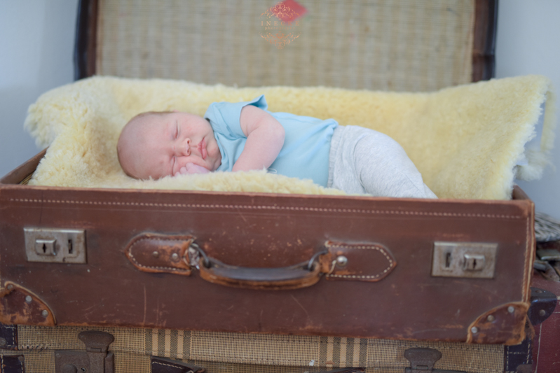Morne Newborn Preview low res33